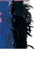 Feather Boa (Superior Quality - Black)