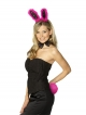 Bunny Set (Black with Pink Fur)