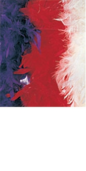 Feather Boa (Superior Quality - Red)